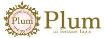 さいたま市南浦和のドライヘッドスパサロン Plum in fortune lapis(プラム・イン・フォーチュン・ラピス