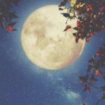 10月31日牡牛座満月